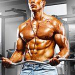 筋肉の成長